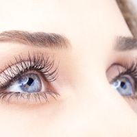 Focus sur la correction permanente de la chute des sourcils par suspension élastique