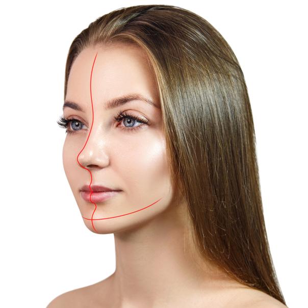Pourquoi le visage est-il asymétrique ?